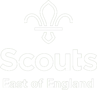 scouts small 2